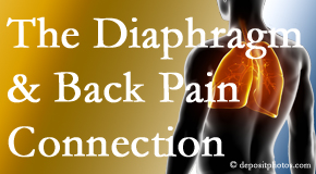 Pensacola Spinal Rehab Center recognizes the relationship of the diaphragm to the body and spine and back pain.