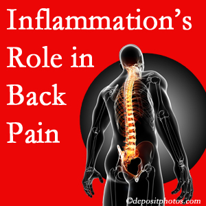 The role of inflammation in Pensacola back pain is real. Chiropractic care can help.
