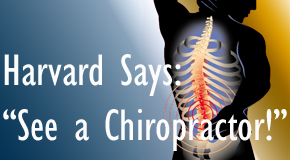 Pensacola chiropractic for back pain relief urged by Harvard