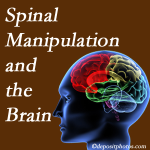 Pensacola Spinal Rehab Center [shares research on the benefits of spinal manipulation for brain function.